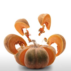 Pumpkin exploded, pumpkin slices and seeds suspended in the air