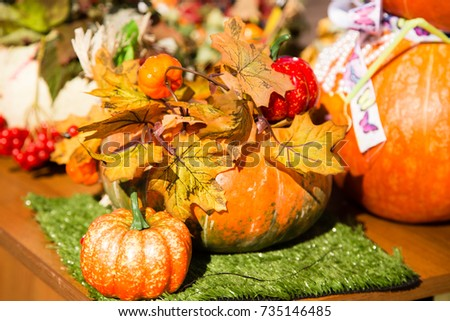 Pumpkin harvest in the nature #735146485