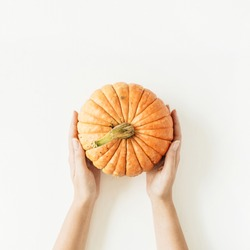 Pumpkin in female hands on white background. Flat lay, top view fall autumn concept.
