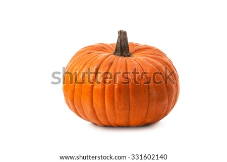 Pumpkin isolated on white background #331602140