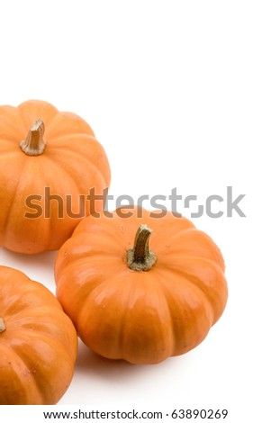 Pumpkin isolated on white. For Halloween, thanksgiving holiday and Autumn theme.