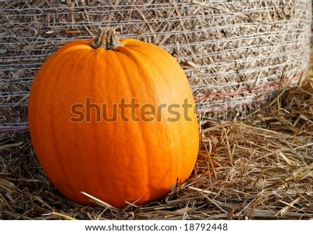 Pumpkin on a bale of straw #18792448