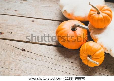 Pumpkin on a wooden background/toned photo