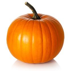Pumpkin on white background. Fresh and ripe
