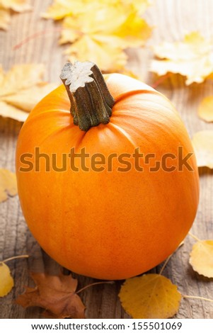pumpkin on wooden background  - stock photo