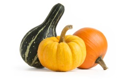 Pumpkin, Squash, Gourd isolated on white background