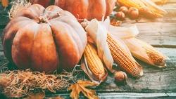 Pumpkin, Squash. Happy Thanksgiving Day Background. Autumn Thanksgiving Pumpkins over wooden background, still-life. Beautiful Holiday Autumn festival concept scene Fall, Harvest