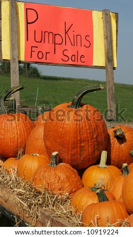 pumpkin stand with sign
