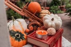 Pumpkin stil life with books and a candle. Autumn/Fall, Halloween, Thanksgiving or harvest concept.