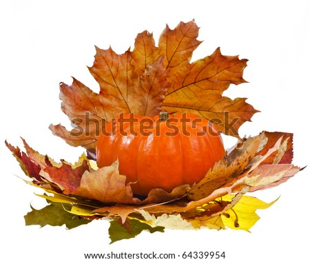 Pumpkin with  Colorful autumn leaves