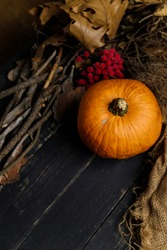 Pumpkin with dry autumn leaves and red berries on black wooden background. Autumn harvest, healthy organic food concept. Copy space.