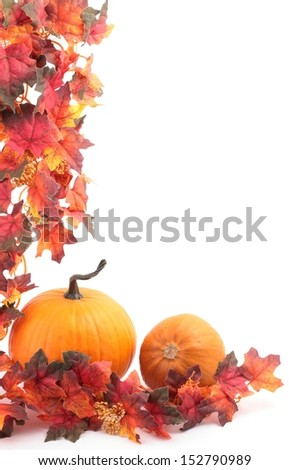 Pumpkins and autumn decorations on white background with copy space. - stock photo