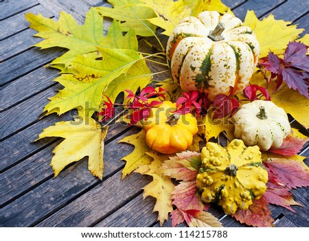 pumpkins and autumn foliage on a wooden table #114215788