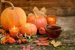 pumpkins and cup of tea. autumn cozy still life. fall season. thanksgiving and halloween holiday concept. copy space.