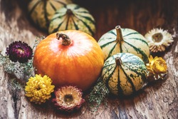 Pumpkins and dried flower. Thanksgiving day or halloween, autumn greeting background. Fall season still life concept