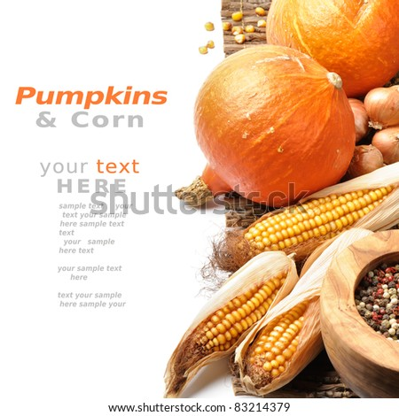 Pumpkins and fall vegetables over white background with copyspace