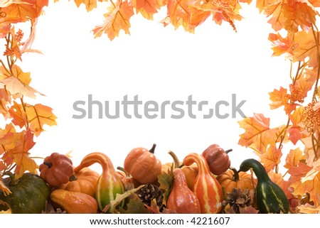 Pumpkins and gourds on isolated on white background with fall leaves frame