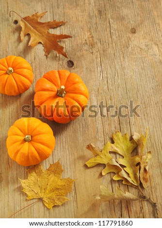 Pumpkins and leaves on the wooden background