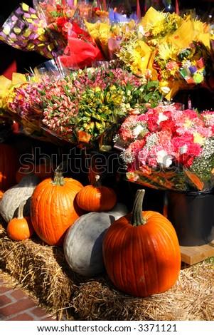Pumpkins display during autumn at Charles Street, Beacon Hill, Boston #3371121