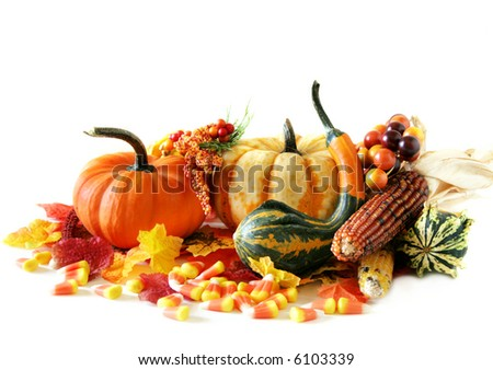 Pumpkins,gourds, indian corn and candy corn