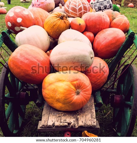 pumpkins  in a cart