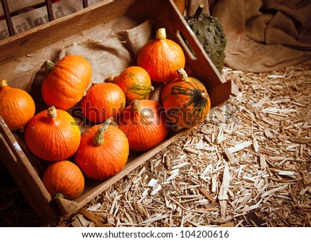Pumpkins in a crate on a straw background for fall concepts