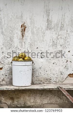 pumpkins in the bucket near the wall