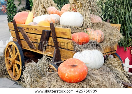 pumpkins loaded in the cart