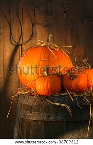 Pumpkins on wine barrel with pitch fork