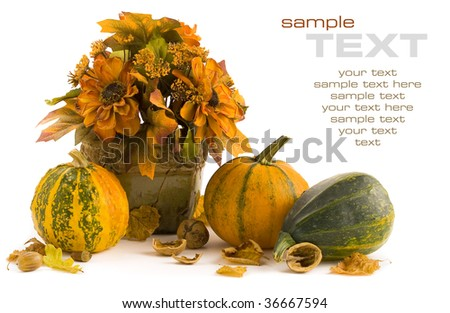 Pumpkins still life on white background (with sample text)
