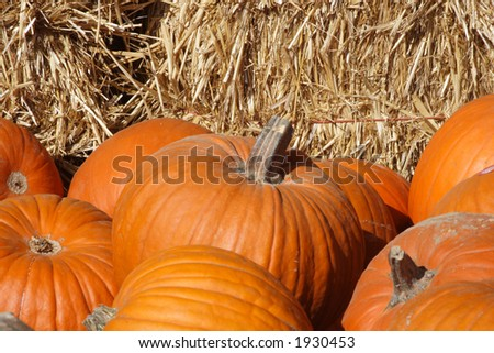 Pumpkins with bales of hay background
