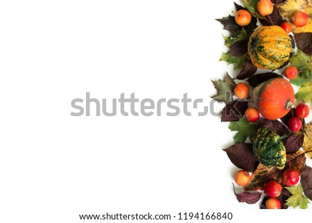 Pumpkins with fall leaves and paradise apples over white background. Top view for your design #1194166840