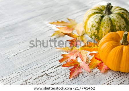 Pumpkins with orange and red autumn leaves on cracked background
