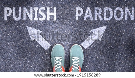 Punish and pardon as different choices in life - pictured as words Punish, pardon on a road to symbolize making decision and picking either Punish or pardon as an option, 3d illustration Stock photo ©