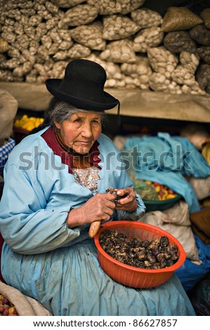 PUNO PERU - AUGUST 23: Quechua woman peels potatoes at a market in Puno, Peru on August 23, 2008. Puno is a popular destination for tourism. It's located on the shore of world famous Lake Titicaca.
