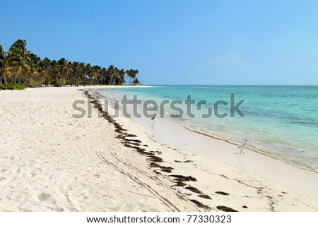Punta Cana in Dominican Republic : beaches and blue water