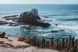 Punta Lobos Chile Oceanview Southamerica