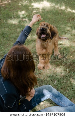 Puppy briard and his owner on the meadow #1459107806