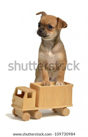 Puppy with wooden truck, isolated on white