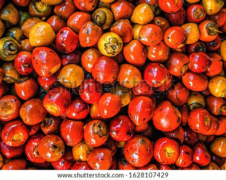 Pupunha Fruit, A Peach Palm Fruit Native from Amazon Rainforest Being Sold in Ver-O-Peso, Famous Touristic and Traditional Food Market in Belém, Pará State, North of Brazil Foto stock ©