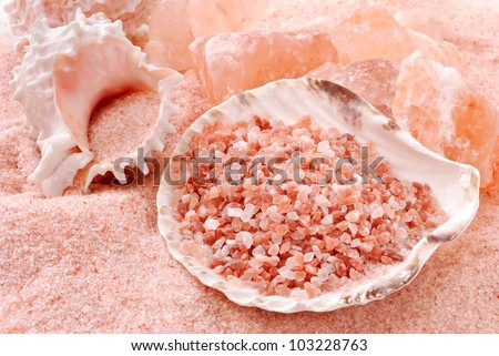Pure Himalayan sea salt (fine grain, coarse, and crystals) with seashells.  Macro with shallow dof.
