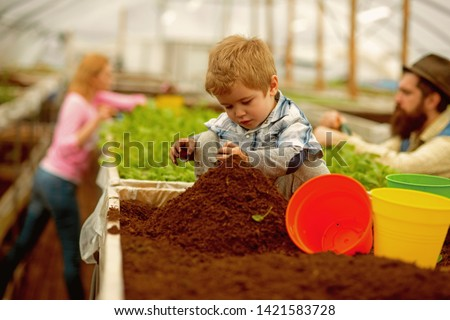 pure soil. pure soil enrichment. small boy work with pure soil. pure soil in greenhouse. gardening #1421583728
