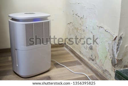 Purifier next to a damaged wall from severe mold and toxic fungus growth. Dehumidifier for water infiltration, moisture, damp and high humidity. Room air filter.