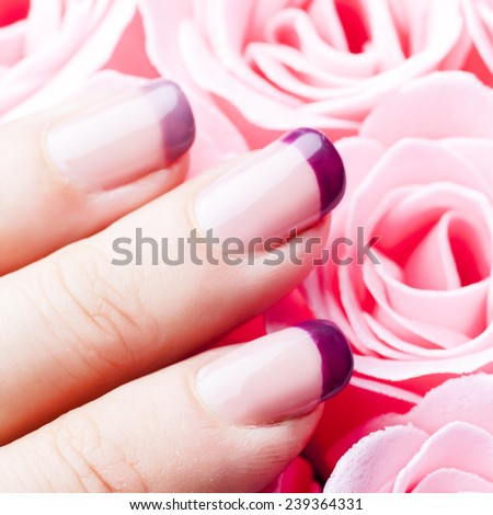 Purple acrylic manicure close up on pink roses background