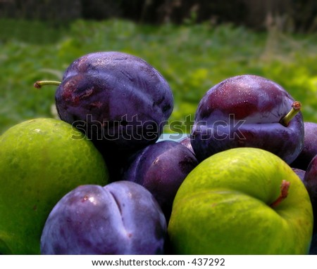 Purple and green plums