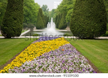 Purple and yellow pansies blooming in park and fountain in Thujas trees, ornamental garden in Poland, cloudy day and open air view in spring season. Horizontal orientation, nobody.