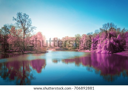 Purple Autumn Forest  in Blue Lake
