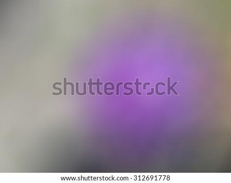 Purple blurred background/Purple blurred background/Purple blurred background