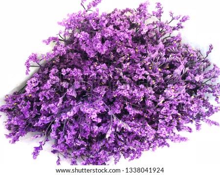 Purple dried wild flowers, dry flower vintage style #1338041924
