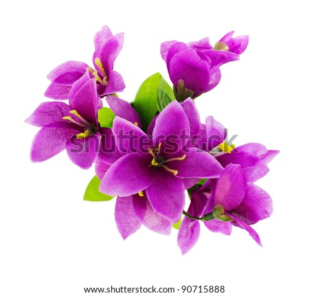Purple fake flowers is isolated on a white (top view)